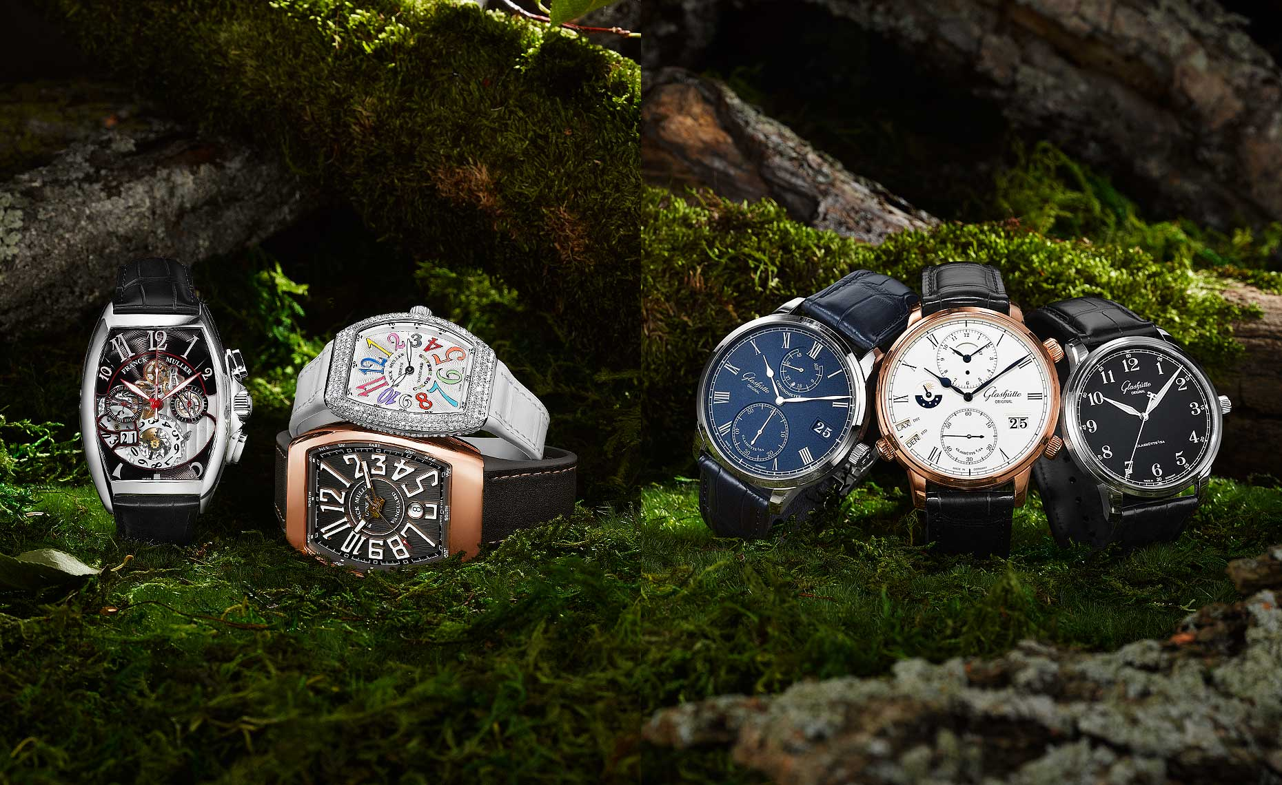 Timepieces in the Forrest